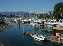 Vancouver Marina. Many boats in a marina with Vancouver Canada in the background Royalty Free Stock Photography