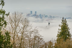 Vancouver Morning Fog Royalty Free Stock Images