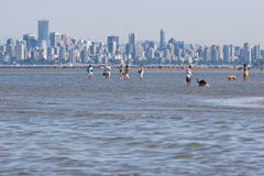 Vancouver skyline from Spanish Banks, low tide. People and pets enjoying the low tide from Spanish Banks. Vancouver skyline in the background royalty free stock images