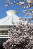 Vancouver Space Center and Blossoms vertical Royalty Free Stock Images