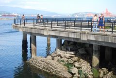 Vancouver strand royaltyfri foto