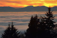 Vancouver Sunset Fog Stock Photos