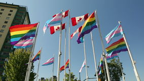 Vancouver, Transgender and Pride Flags. Rainbow colored Gay Pride Flags, Canadian Flags and Transgender flags, flutter in the wind beside English Bay in stock video footage