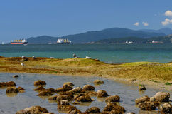 Vancouver-Wandweg Lizenzfreie Stockfotos