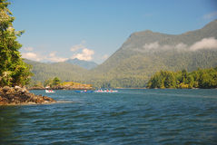 Vancouver wyspę. Obrazy Royalty Free