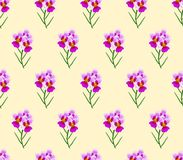 Vanda Miss Joaquim Orchid on Ivory Beige Background. Singapore National Flower. Vector Illustration. Vanda Miss Joaquim Orchid on Ivory Beige Background stock illustration