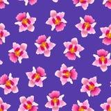 Vanda Miss Joaquim Orchid rose sur Violet Background pourpre Fleur de ressortissant de Singapour Illustration de vecteur illustration stock