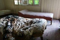 Vandalized beds Stock Image