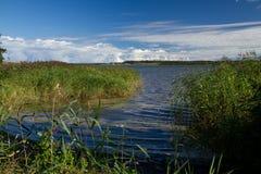 湖vandet 免版税库存照片