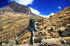 Vandring i Cordillerasberg Royaltyfri Bild