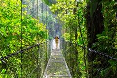 Vandring i Costa Rica arkivbilder