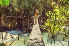 Vandring i Costa Rica Arkivbild