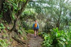 Vandring i Hawaii Royaltyfri Fotografi