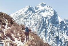 Vandring i Himalayas Arkivfoto