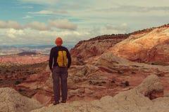 Vandring i Utah royaltyfri foto