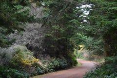 Vandring runt om den fortEbey delstatsparken, WA Arkivfoton