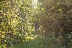 Vandring-, turism- och naturbegrepp - ung handelsresande med ryggsäckanseende över skogbakgrund royaltyfri bild