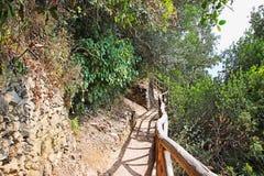 Vandringsled i bergen Royaltyfria Foton