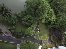 Vandringsled och bro i en parkera Arkivbilder