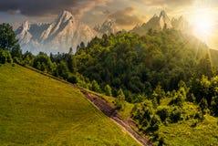 Vandringsled till och med skog på backen på solnedgången Arkivbilder
