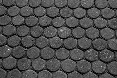 Vandringsledtexturbakgrund Arkivfoto