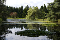 VanDusen Botanical Garden Stock Image