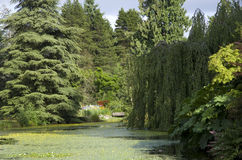 VanDusen Botanical Garden Royalty Free Stock Photo