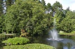 VanDusen botanisk trädgård arkivbilder