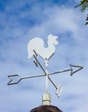 Vane κοτόπουλου Στοκ φωτογραφία με δικαίωμα ελεύθερης χρήσης