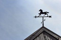 Vane_horse Stock Afbeeldingen