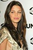 Vanessa Ferlito Royalty Free Stock Image