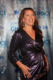 Vanessa L Williams Royalty Free Stock Photos