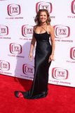 Vanessa Williams. At The 6th Annual 'TV Land Awards'. Barker Hangar, Santa Monica, CA. 06-08-08 Royalty Free Stock Photo