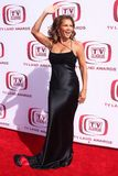 Vanessa Williams. At The 6th Annual 'TV Land Awards'. Barker Hangar, Santa Monica, CA. 06-08-08 Stock Images