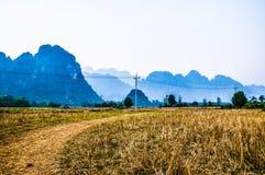 Vang vieng领域 免版税库存图片