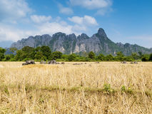 Vang Vieng karst mountains Stock Photography