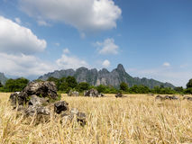Vang Vieng karst mountains Royalty Free Stock Photos