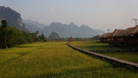 Vang Vieng. Laos, sabaidee, green, ricefields, nature, travel stock image