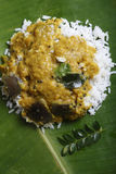 Vangi Dal or eggplant / brinjal dal curry Stock Photos