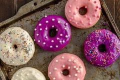 Vaniglia al forno fresca Bean Iced Doughnuts Immagini Stock