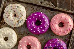 Vaniglia al forno fresca Bean Iced Doughnuts Fotografia Stock