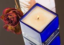 Vaniglia bruciata, candela sentita pesca con il germoglio rosa secco Fotografie Stock