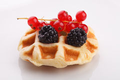 Vaniila waffle with mix berry Stock Image