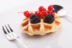 Vaniila waffle with mix berry Royalty Free Stock Photography