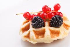 Vaniila waffle with mix berry Stock Photos