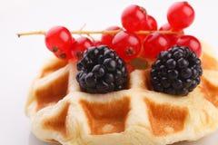 Vaniila waffle with mix berry Stock Photo
