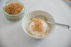 Vanilj-kokosnöt glass i en bunke Royaltyfria Foton