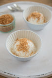 Vanilj-kokosnöt glass i en bunke Royaltyfri Fotografi
