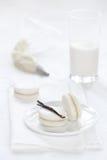 Vanilj Macarons på vit bakgrund Fotografering för Bildbyråer