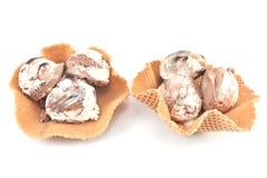Vanilj- och chokladglass i kotte Arkivbild